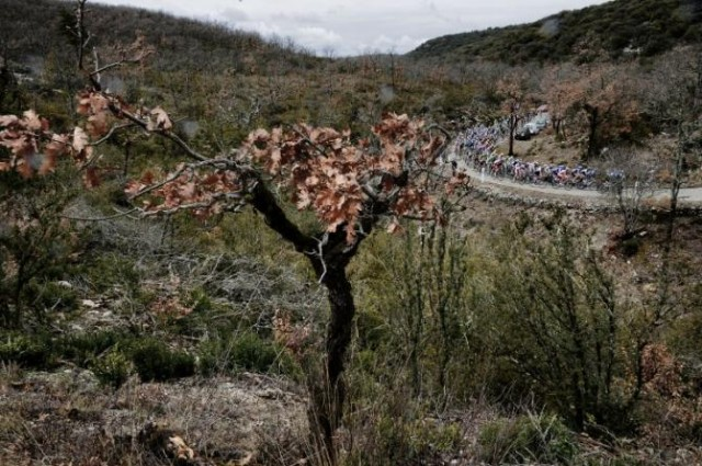 Paris-Nice-2013-stage5--04