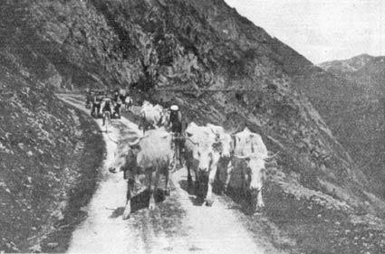 1923-uno-strano-incontro