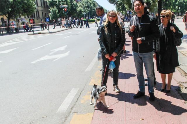 giro-2013-dogs-04