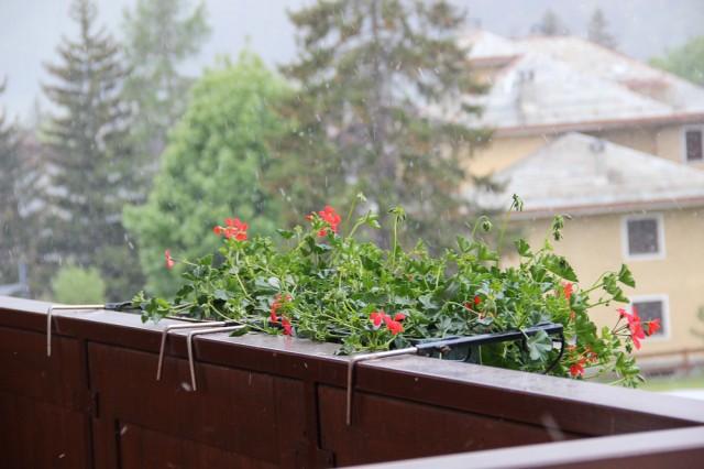 Снег утром. Гостиница находится у Стельвио