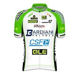 Bardiani_CSF_Pro_Team_2014