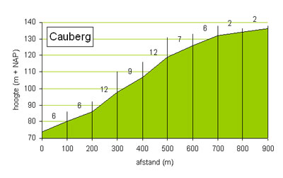 cauberg_graph1